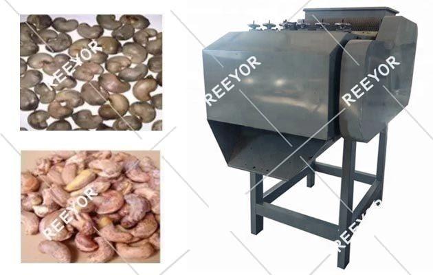 Cashew Shelling Machine Manufacturer